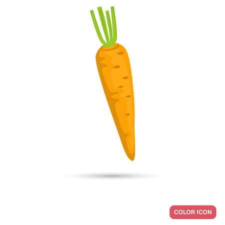 Carrot color flat icon for web and mobile design