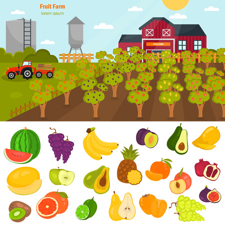 Fruits color flat icons set. Fruit farm illustration for web and mobile design
