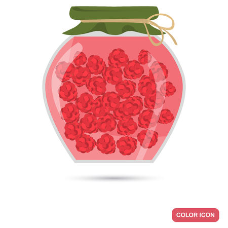 Preserved raspberries clor icon for web and mobile design
