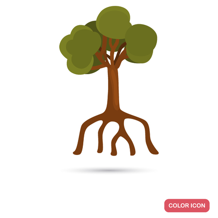 Mangrove tree color flat icon for web and mobile design