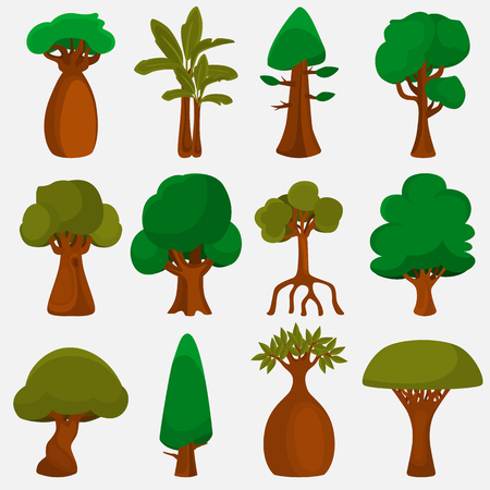 Trees of the world color icons set for web and mobile design