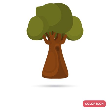temperate: Oak tree color flat icon for web and mobile design. Illustration