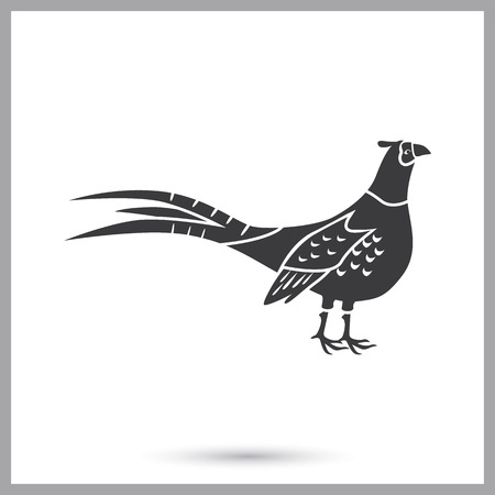 Pheasant simple icon illustrated in gray, isolated on white background