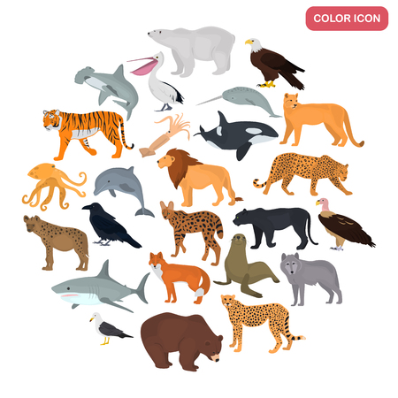 Set of land and water predators color flat icons