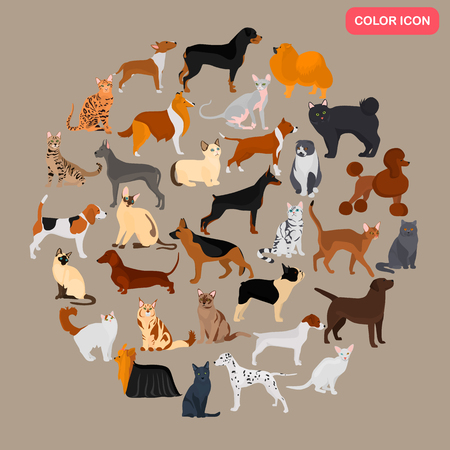 Set of different cats and dogs breeds color flat icons