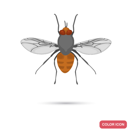 Tsetse fly color flat ico for web and mobile design