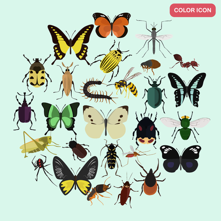Set of different insects color flat icons set