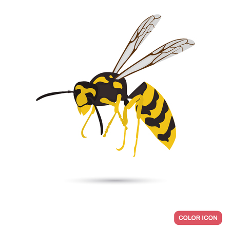 Wasp color flat icon for web and mobile design