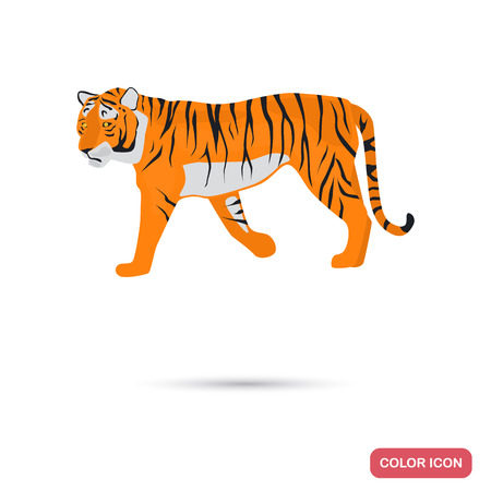 Tiger color flat icon for web and mobile design Illustration