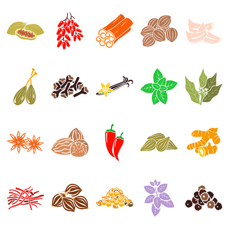 Spices color simple icons set vector illustration.
