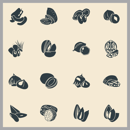 Nuts simple icons set vector illustration. Illustration