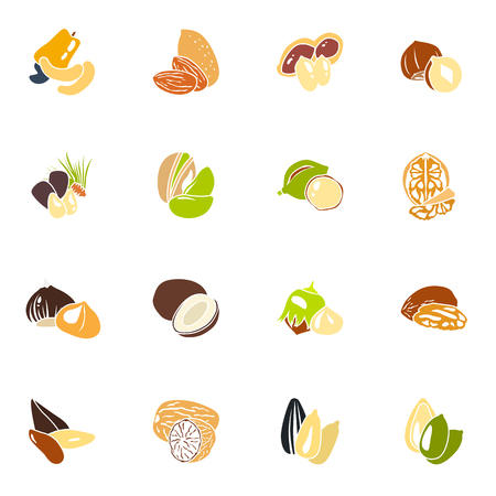 Color nuts simple icons set vector illustration.
