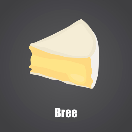 Bree cheese slice color flat icon