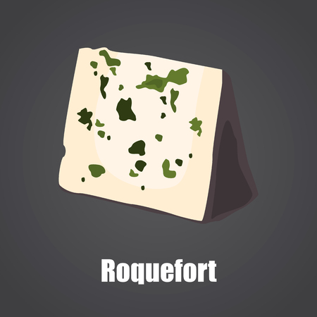 Roquefort cheese slice color flat icon