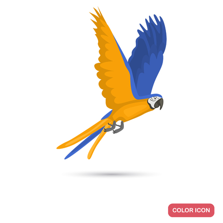 Macaw parrot color flat icon for web adn mobile design