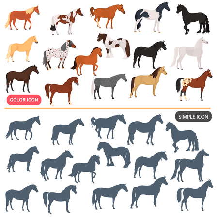 Horse breeds color flat icons set. Horse black silhoutte simple icons set 向量圖像