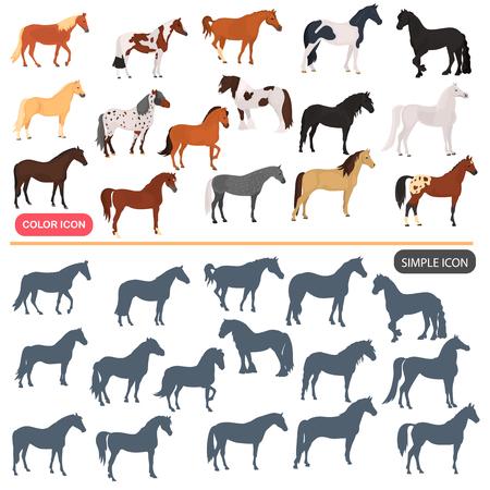 Paardenrassen kleur plat pictogrammen instellen. Geplaatste eenvoudige pictogrammen van paard de zwarte silhoutte