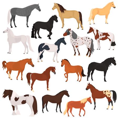 races de chevaux icônes de couleur plat fixés