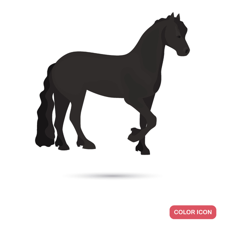 Friesian horse color flat icon Illustration