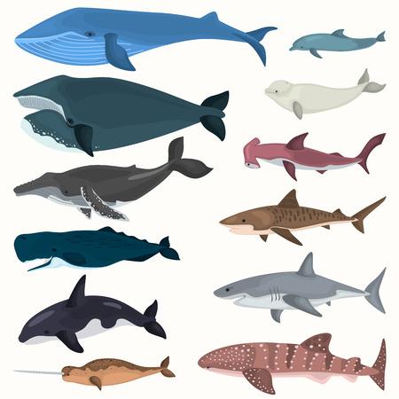 Set van kleur gigantische inwoners van de zee diepten pictogrammen