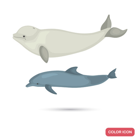 Dolphin and white whale color flat icons set Illustration