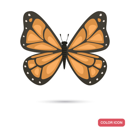 Beautiful butterfly color flat icon isolated on plain background. 矢量图像