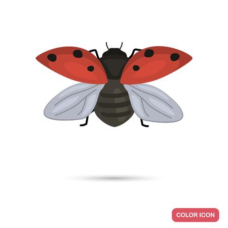 Ladybug color flat icon isolated on plain background.