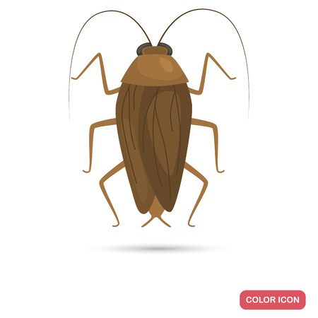 A Cockroach color flat icon isolated on plain background. 스톡 콘텐츠 - 96638618