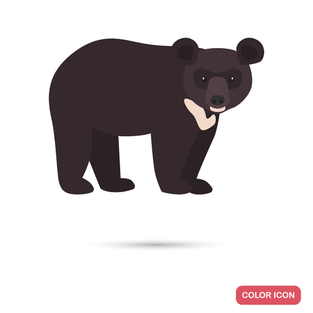 Himalayan bear color flat icon