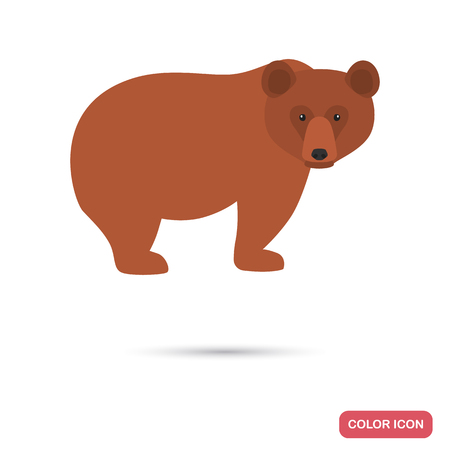 Brown bear color flat icon