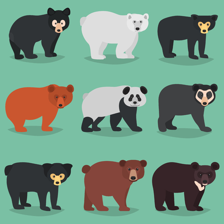 Different bears breeds color flat icons set