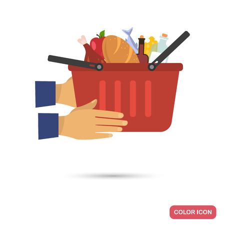 Grocery delivery service color flat icon Vector illustration.