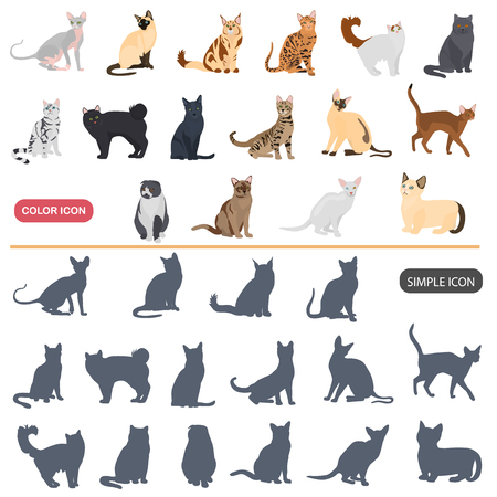 Color flat and simple cats breeds icons set isolated on plain background.