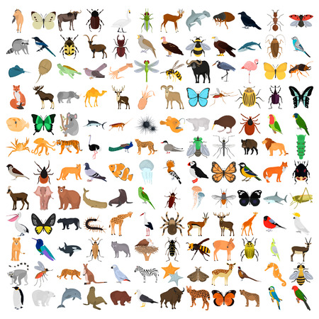Huge animals color flat icons set isolated on plain background. Ilustração