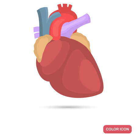 Human heart color flat icon Ilustrace
