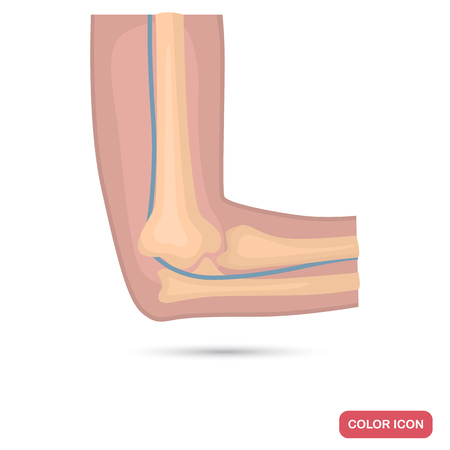 Elbow joint of a human color flat icon