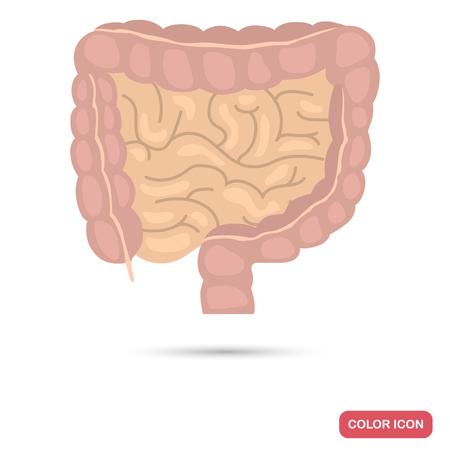 The human intestine color flat icon Illustration
