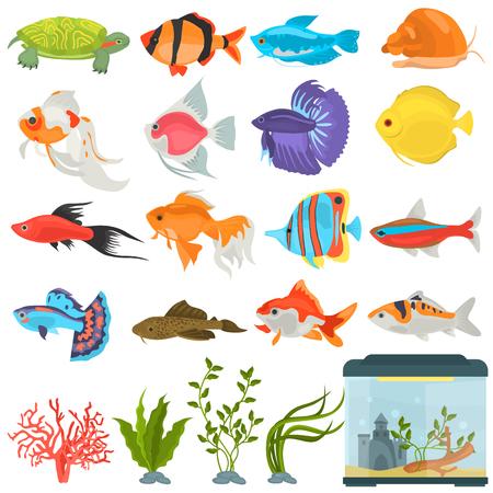 Aquarium flora and fauna color flat icons set