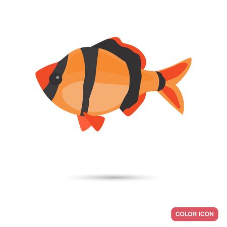 Aquarium barb fish color flat icon