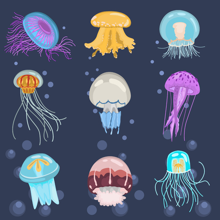 Set of different color flat jellyfish icons