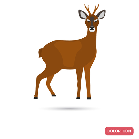 Roe deer color flat icon for web and mobile design Illustration