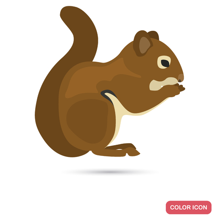 Squirrel color flat icon for web and mobile design Illustration