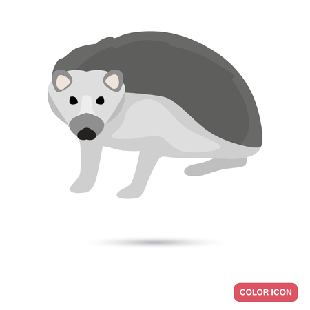 Hedgehog color flat icon for web and mobile design