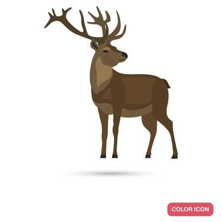 Male deer color flat icon for web and mobile design