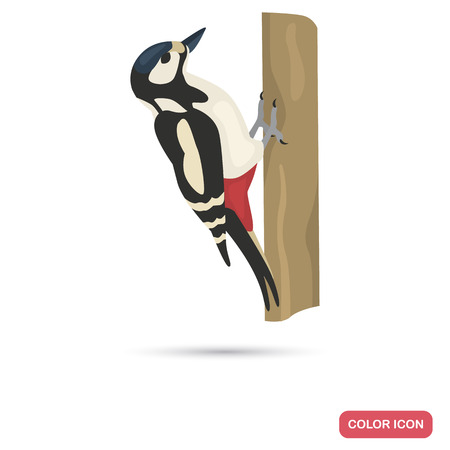 Woodpecker color flat icon for web and mobile design
