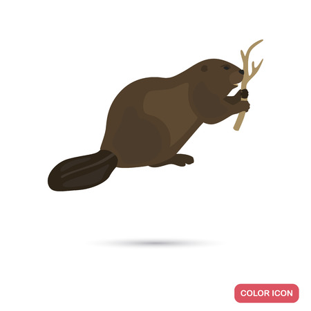 Beaver color flat icon for web and mobile design
