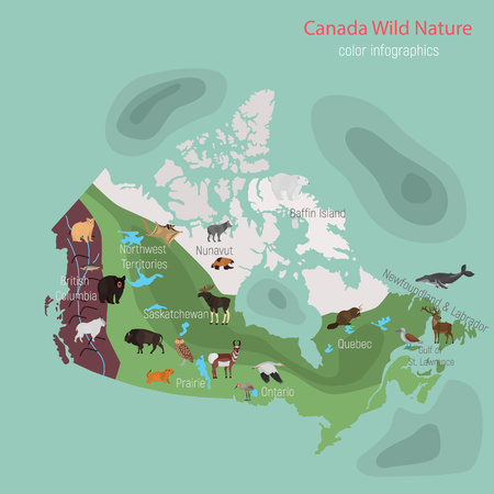 Wild animals of Canada color flat infographics