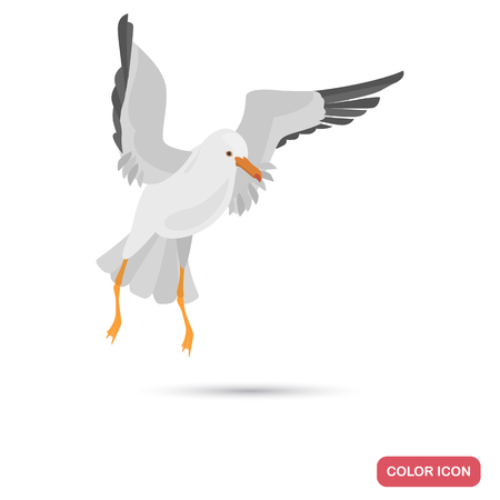Flying seagull color flat icon