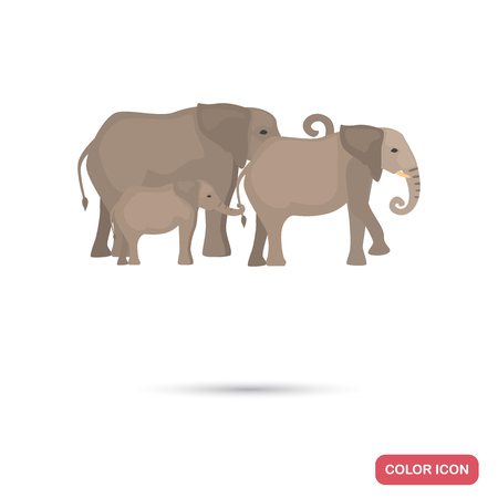 Africa elephants family color flat icon