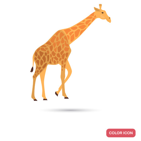 Giraffe color flat icon
